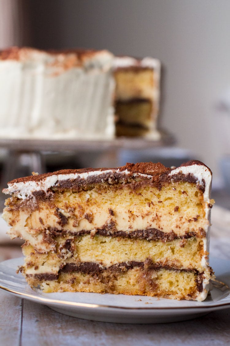 Close-up of a slice of tiramisu cake.