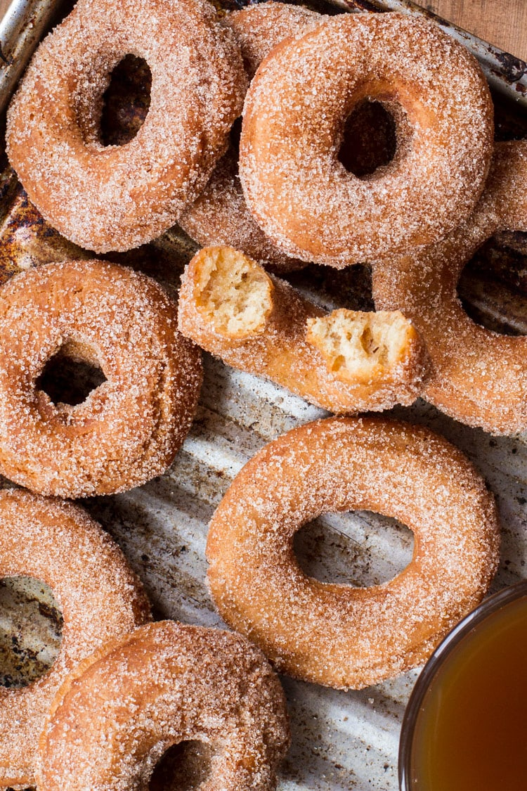 Apple cider donuts, flatlay and close-up. One taken a bite out of.