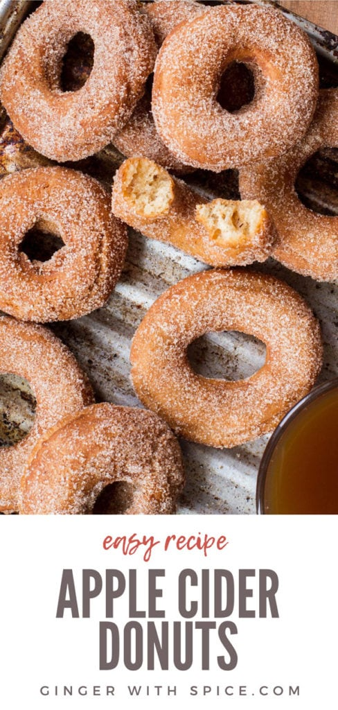 Apple cider donuts, flatlay and closeup. One taken a bite out of. Pinterest pin.