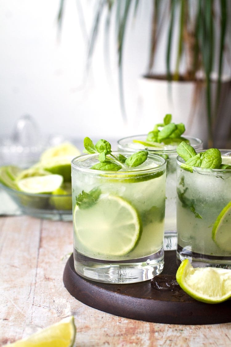 Old fashioned glasses filled with mojito, garnished with lime and mint. Small 'palm tree' in the background.
