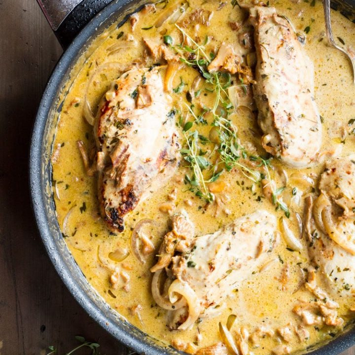 Four chicken breast in mustard cream sauce, garnished with thyme. Flat-lay.